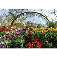 Image of Eden Project