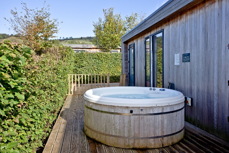 Whileaway Lodge - Strawberryfield Park a holiday cottage rental for 4 in Cheddar,