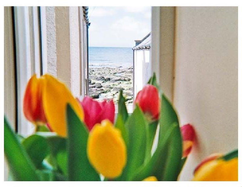 Details about a cottage Holiday at Ellie-Ann Cottage