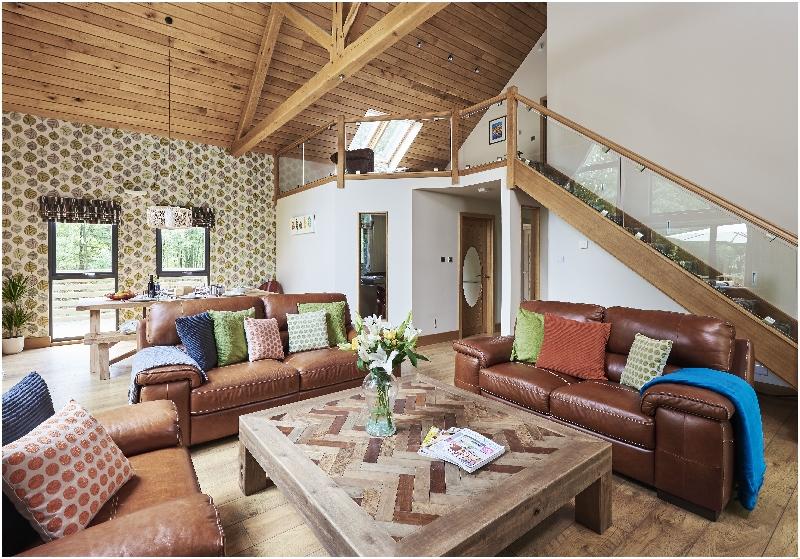 Image of Ladycross Lodge Shunner Howe