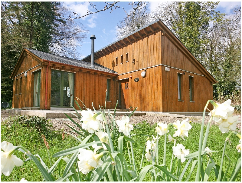 Ballyhoura Forest Luxury Homes a holiday cottage rental for 6 in Kilfinane,